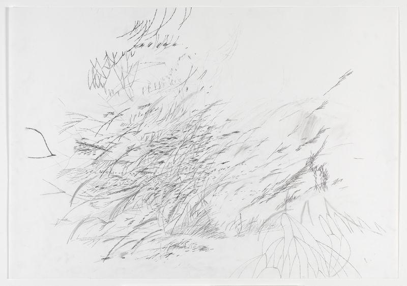 Danjuma Collection. 1. Julie Mehretu, Mind Breath Drawings (2010).jpg