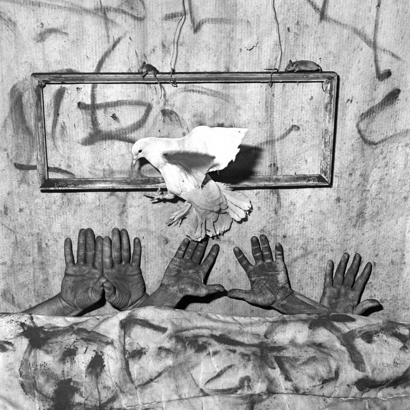BallenFive+Hands,+2006