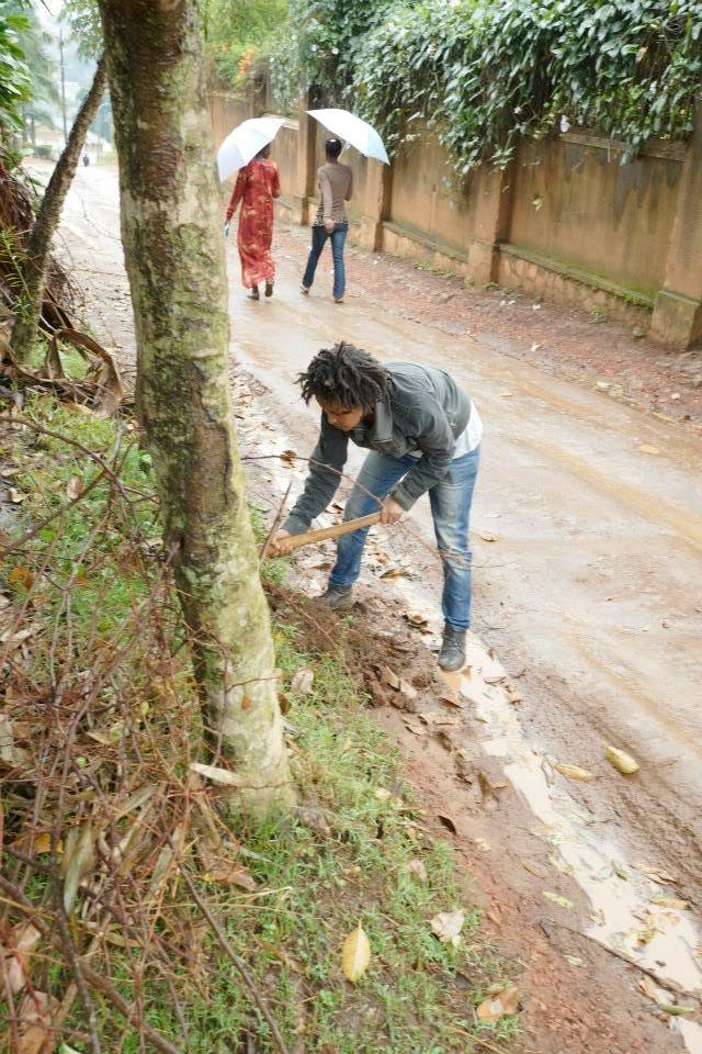 Helen Zeru Uprooting a tree Kampala