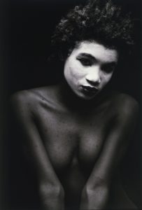 LyHa_Coquette_1987-88_lg_338_500